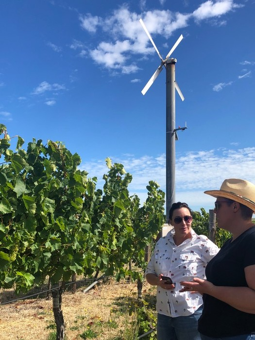 Anita Goode and Melissa Edwards in the Wangolina vineyard